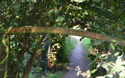 Boondael : Les derniers potagers d'Ixelles sauvés?