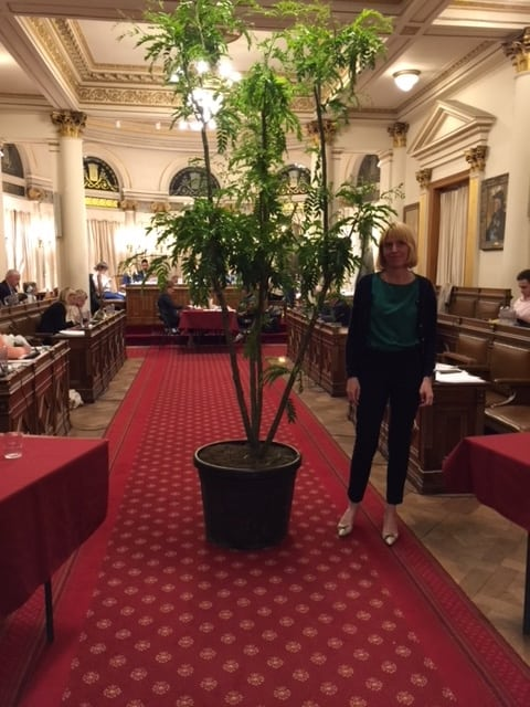 Audrey Lhoest apporte un arbre à la bourgmestre d'Ixelles