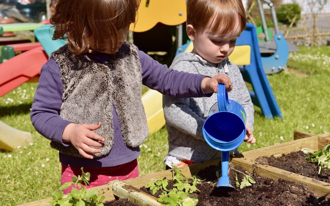 La biodiversité trouve un refuge aux Petits Poneys